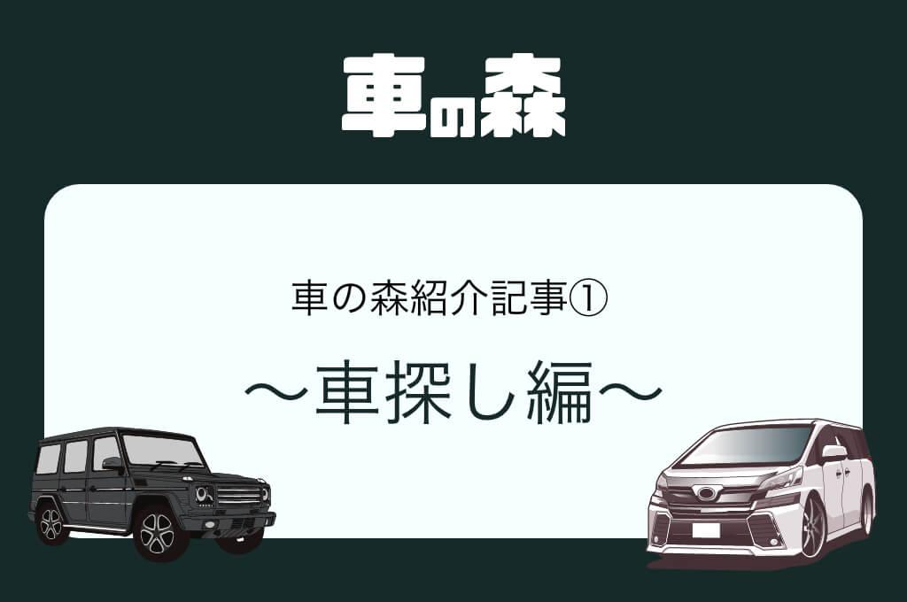 手続き紹介記事① 車探し編